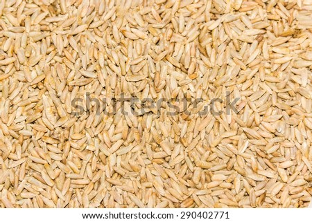 Grain of ripe rye closeup, texture, background