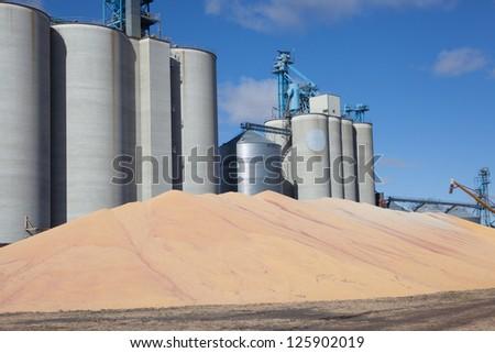 grain production - stock photo