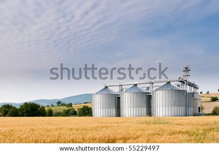 Grain store in early morning wheat field - stock photo