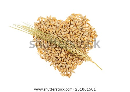 Grains of barley in the shape of a heart overlaid by an ear of barley in the manner of a Cupid heart isolated on white - stock photo