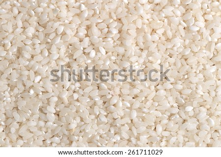 Grains of rice closeup - stock photo