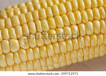 Grains of ripe corn. Fresh sweet corn on wooden table