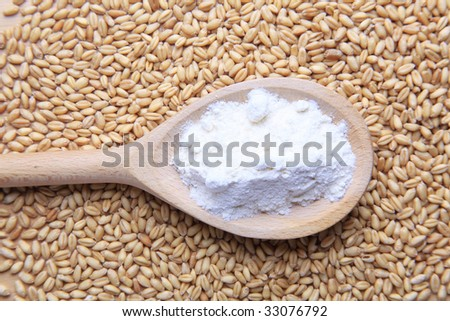 Grains of wheat and flour