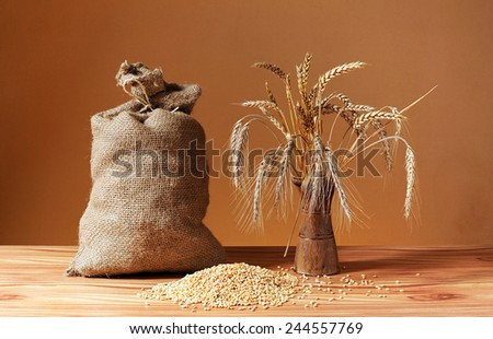 Grains of wheat, jute sack and  ceramic vase on the table - stock photo