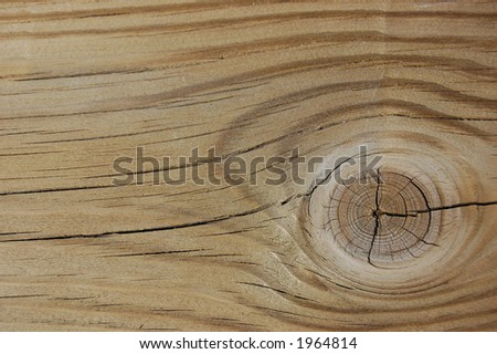 Grainy wood with knot background/texture - stock photo
