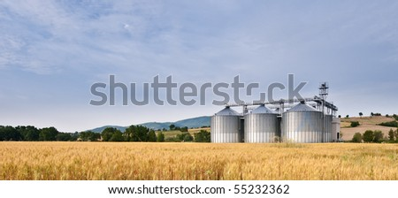Granary in summer wheat field - stock photo