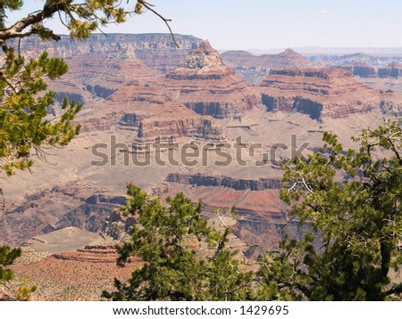 Grand Canyon from Grandview Point (S Rim), framed by pines