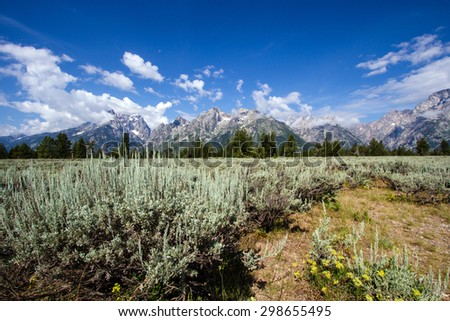Grand Teton Mountains and a sagebrush field in Grand Teton National Park - stock photo