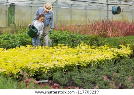 Grandfather and child watering plants in greenhouse - stock photo