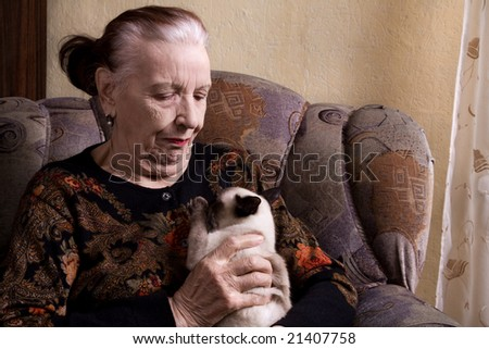 grandmother and cat - stock photo