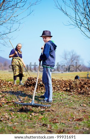 Grandmother and grandson spring cleaning the walnut orchard with rakes - stock photo