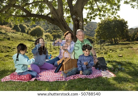 grandparents and  grandchildren blowing soap bubbles in a picnic - stock photo