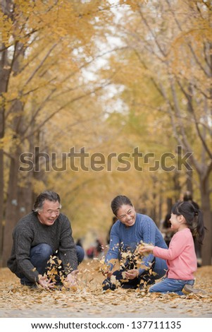Grandparents and granddaughter playing in park - stock photo