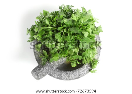 Granite pestle and mortar with coriander, top down view and isolated on white. - stock photo