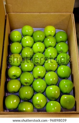 Granny Smith Apples in a fruit packing warehouse - in a box - stock photo