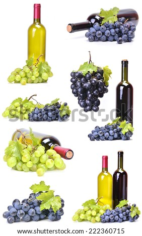 Grape and wine collection - stock photo
