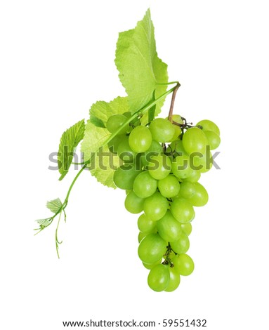 Grape cluster over white - stock photo