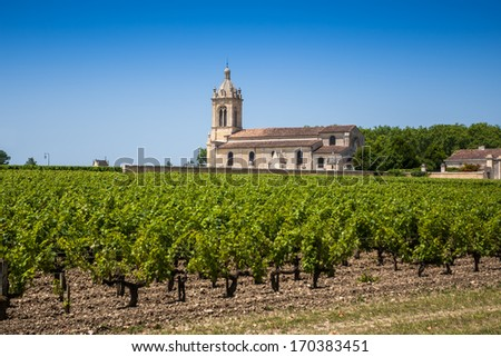 Grape field and old church behind. The typical landscape in Bordeaux region in France - stock photo