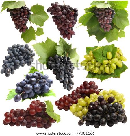 Grape fruits - stock photo