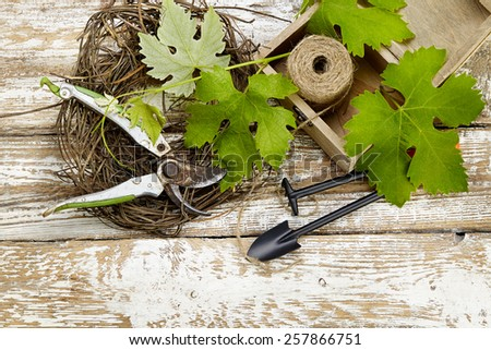 Grape leaves  and garden tools on wooden table - stock photo