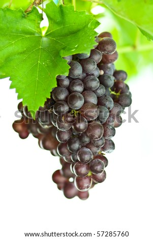 Grape string with white background glowing at central of Thailand