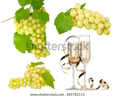 Grape, Vine, Isolated.