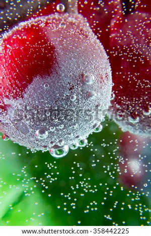 grape water bubbles green leaf dark background close-up macro - stock photo