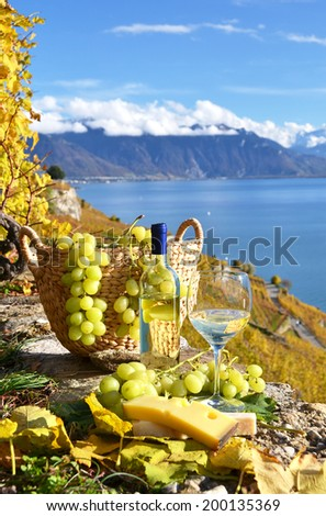 Grapes and wine. Lavaux, Switzerland