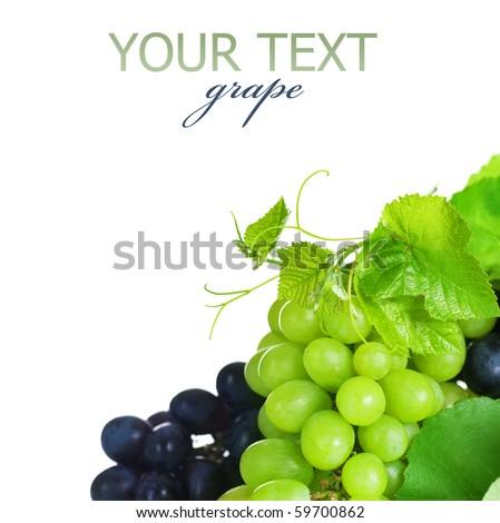 Grapes border isolated on White - stock photo