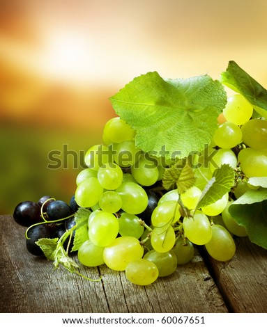Grapes.Grapevine over vineyard background - stock photo
