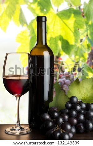 grapes in the vineyard with red wine