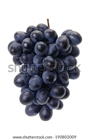 grapes isolated on a white background                                     - stock photo
