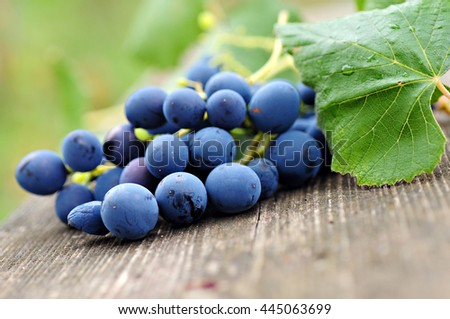Grapes on a old wooden table - stock photo