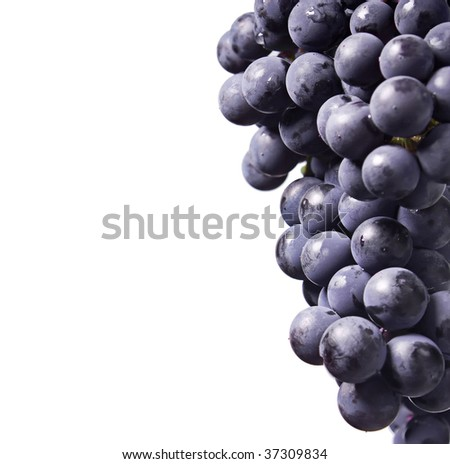 grapes on a white background - stock photo