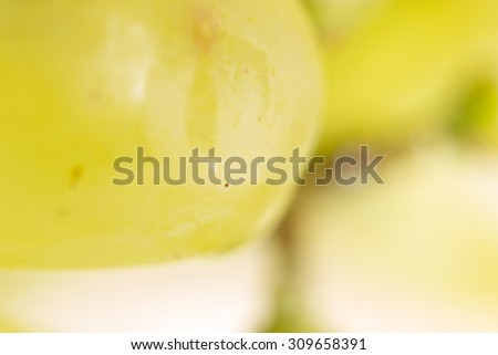 grapes. super macro - stock photo
