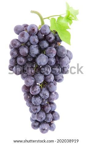 grapes with leaves, Isolated on white background with clipping path