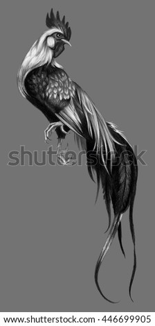 Graphic drawing with watercolor pencils. Rooster on a gray background. - stock photo