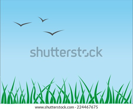 Grass and bird on blue sky - stock photo