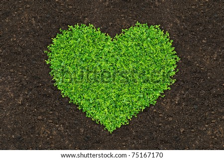 grass and green plants growing a heart shape on soil manure in the birds eye view - stock photo