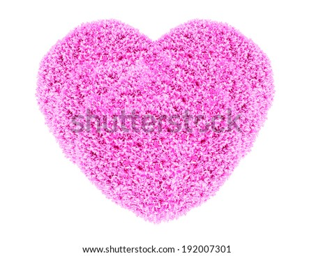 Grass and plants, small pink heart. During the Valentine season. on white background - stock photo