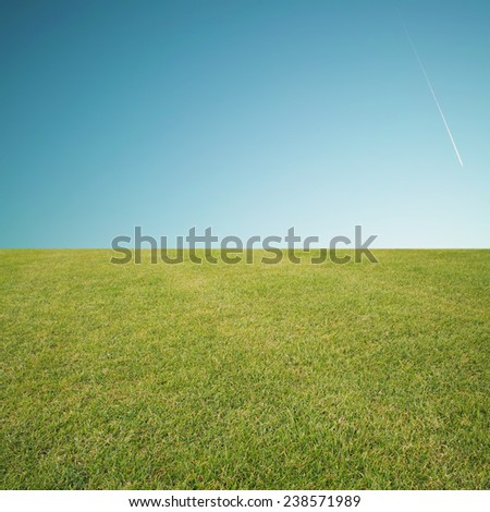 grass and sky - stock photo