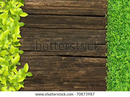 grass and Small green plants depend on old wood. - stock photo