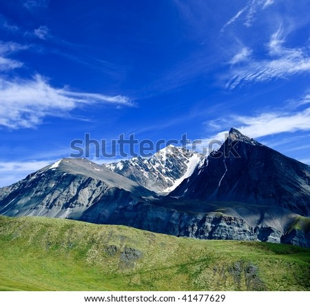 grass and snow - stock photo