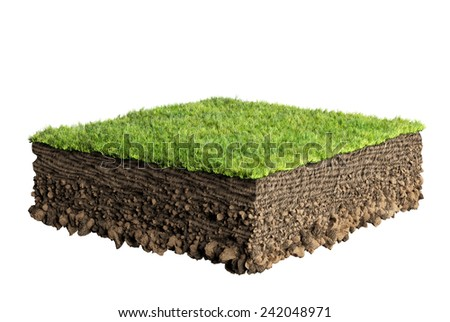 grass and soil profile  - stock photo