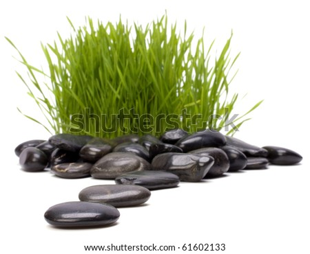 grass and stones isolated on white background. focus on stones. - stock photo