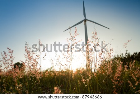 grass and sunset with wind turbine background - stock photo