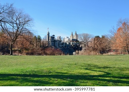 Grass and trees in Central Park, New York city