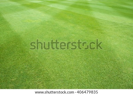 grass background of sport field