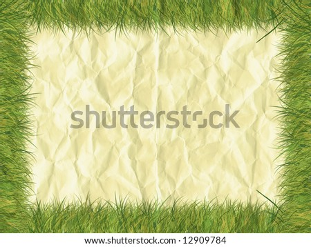 Grass border on paper - digital illustration