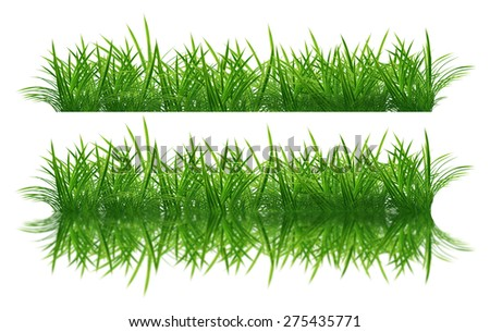 Grass Borders object isolated on white background - stock photo